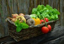 How to make money from vegetable farming business.