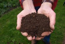 How to Make Money from an Organic Compost.