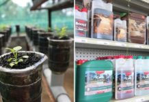 How to Make Money from Hydroponic Store.